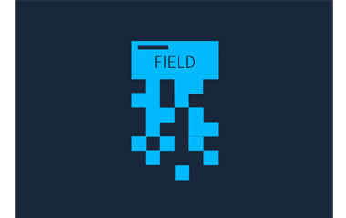 Field Encryption